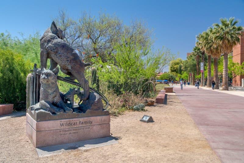 在亚利桑那大学的不可靠的家庭雕象 库存照片
