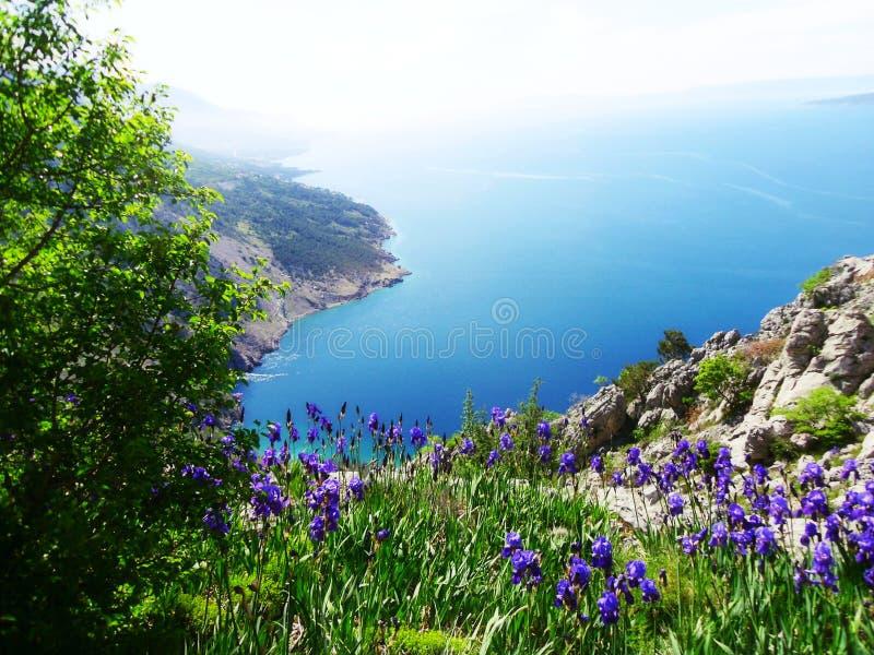 在亚得里亚海的宏伟的视图在达尔马提亚,区域在克罗地亚,欧洲 免版税库存照片