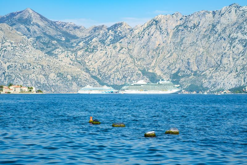 在亚得里亚海的巨大的国际巡航划线员船航行 免版税库存照片