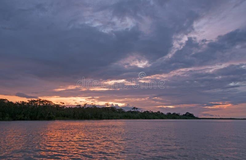 在亚马孙河的日落 免版税图库摄影
