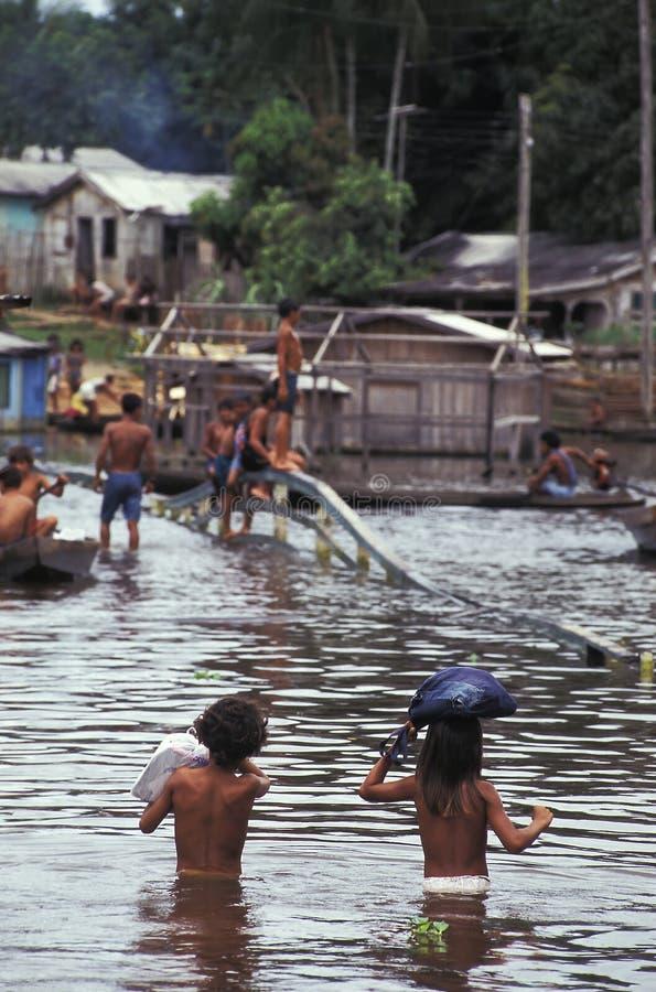 洪水在亚马逊,巴西 免版税图库摄影