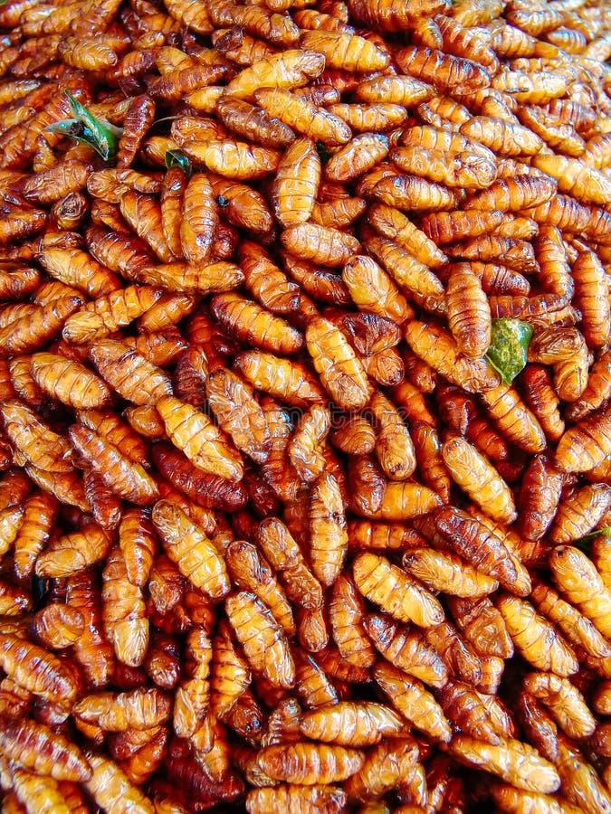 在亚洲的街道食物摊位的油煎的昆虫 免版税库存图片