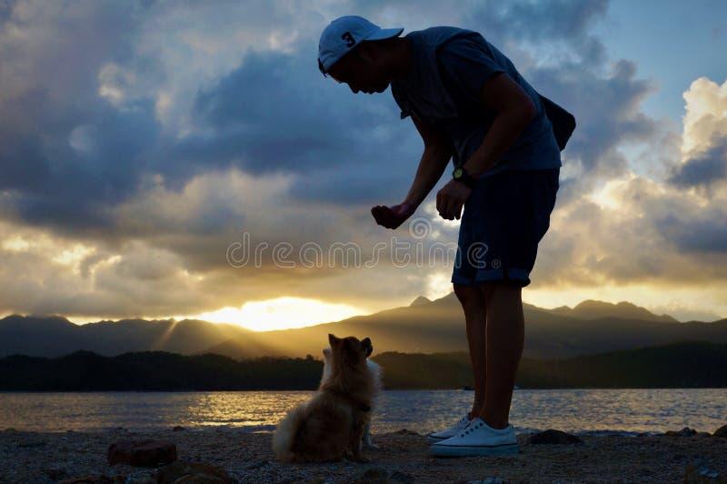在人和狗之间的爱 库存图片
