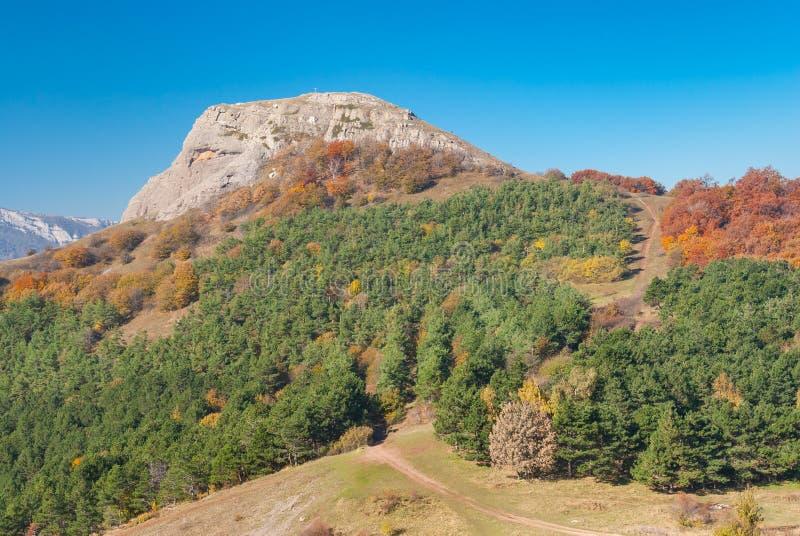在人沼地的秋天,山牧场地Demerdzhi 免版税图库摄影