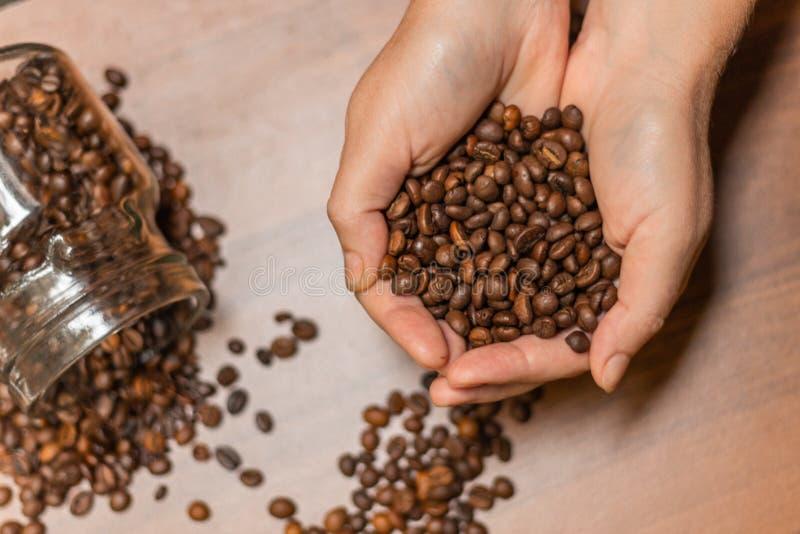 在人的咖啡豆在软的焦点递,在心脏形状  库存图片