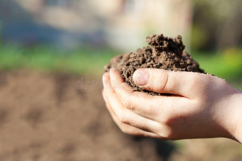 在人的棕榈的土壤 免版税库存图片