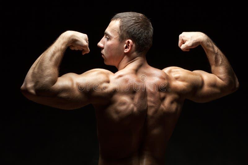 在人的理想的美丽的背部肌肉 免版税库存图片