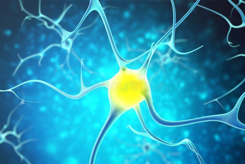 在人的神经系统的神经元与深度的作用调遣 3d翻译 皇族释放例证