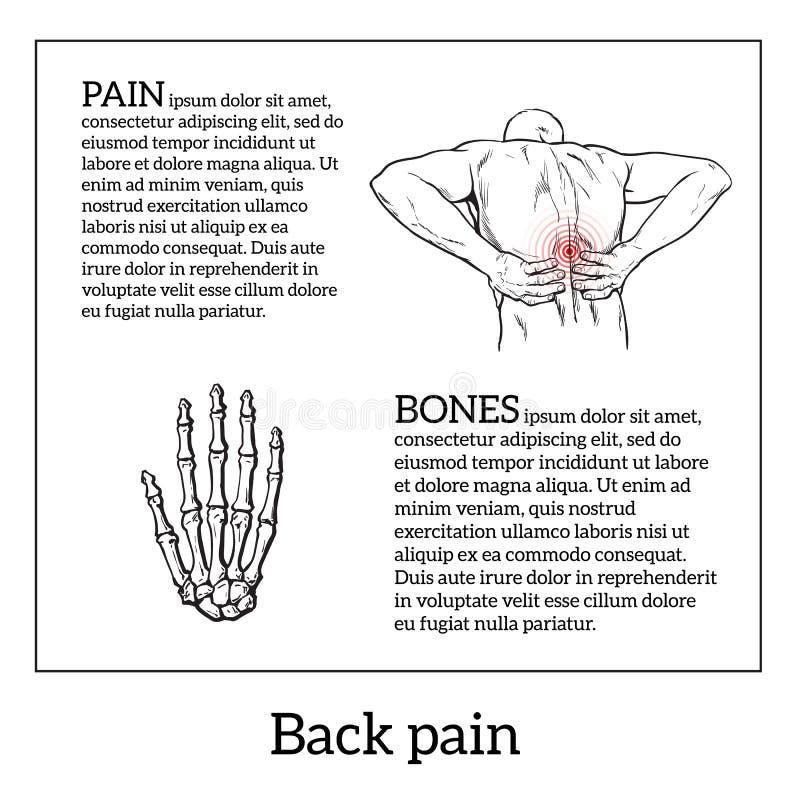 在人的腰下部痛,黑白剪影 向量例证