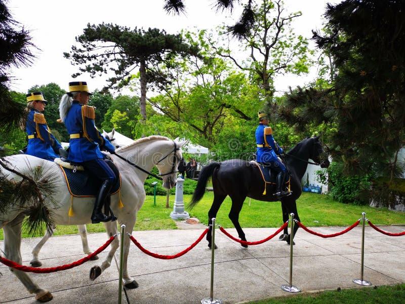 在仪仗队骑马在伊丽莎白宫殿,布加勒斯特的军事卫兵 免版税库存图片