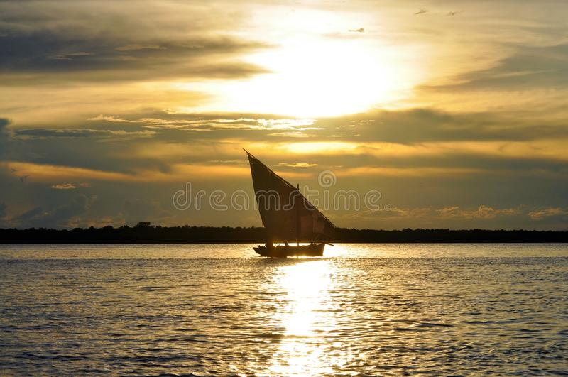 在伊博族海岛的单桅三角帆船风船 库存图片