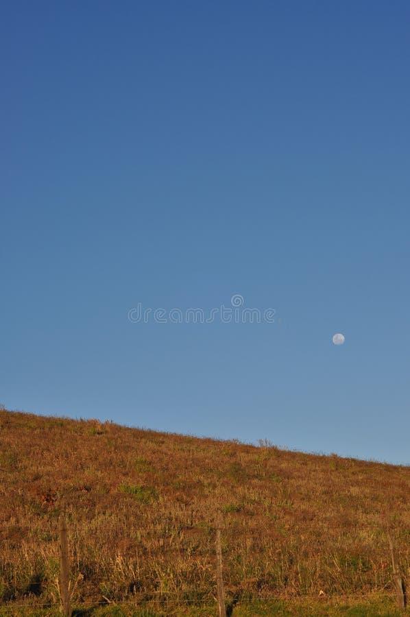 在伊拉苏火山附近的大草原 免版税库存图片