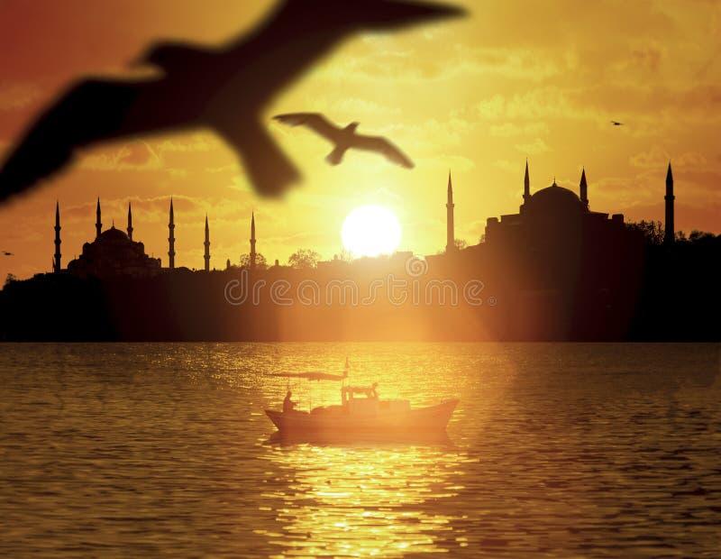 在伊斯坦布尔剪影的日落 免版税库存照片