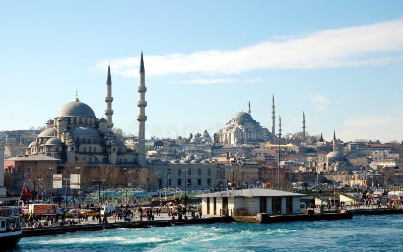 在伊斯坦布尔皇家清真寺的看法 免版税库存照片
