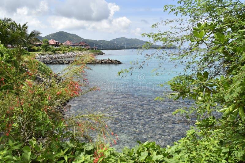 在伊甸园海岛,塞舌尔群岛上的印度洋珊瑚礁 库存照片