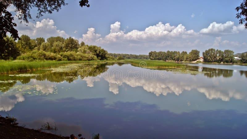 在伏尔加河的夏天。 图库摄影