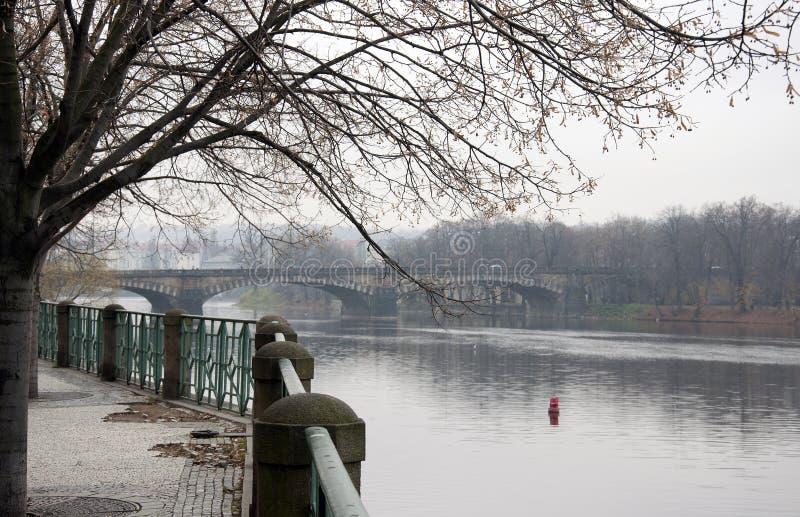 在伏尔塔瓦河河的一座桥梁在秋天的布拉格 库存照片