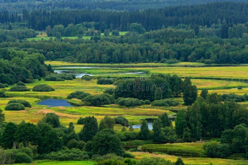 在伏尔塔瓦河河附近的典型的风景在Lipno水库, Sumava国家公园附近在捷克 有河meande的绿色森林 免版税图库摄影