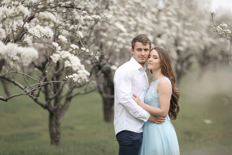 在休息在开花的庭院里的爱的年轻夫妇 白色开花的树 免版税库存图片
