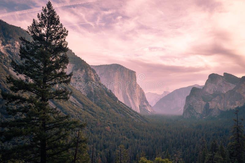 在优胜美地国家公园上的桃红色天空 库存图片