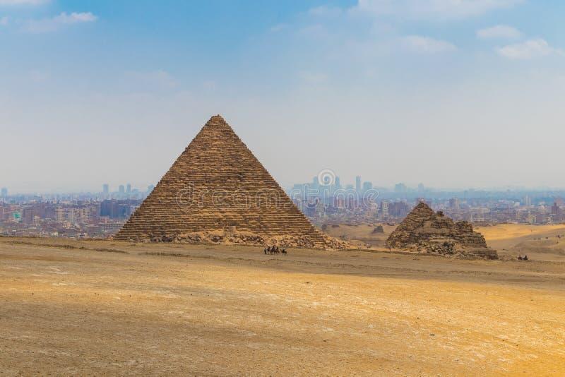 在伟大的孟卡拉金字塔前面的骆驼有蓬卡车 免版税库存照片