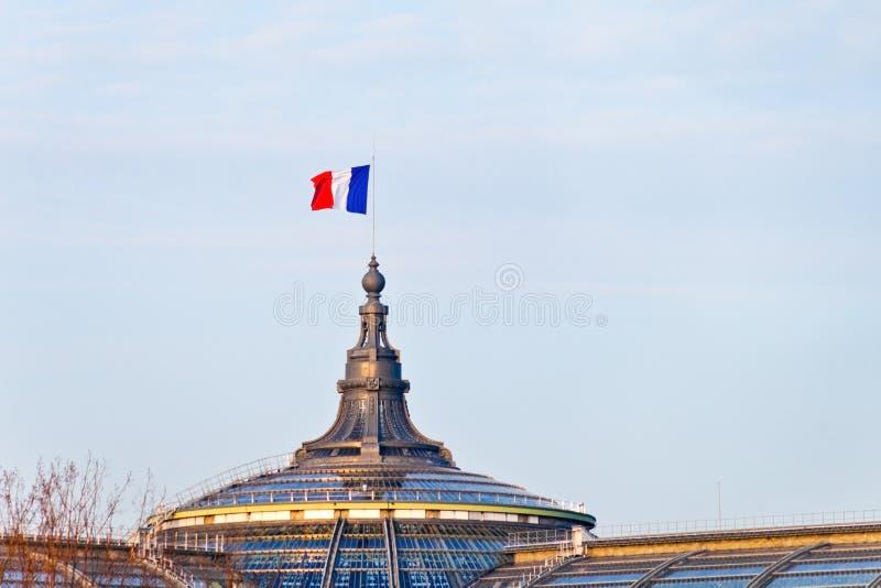 在伟大的宫殿的法国旗子在巴黎 库存照片