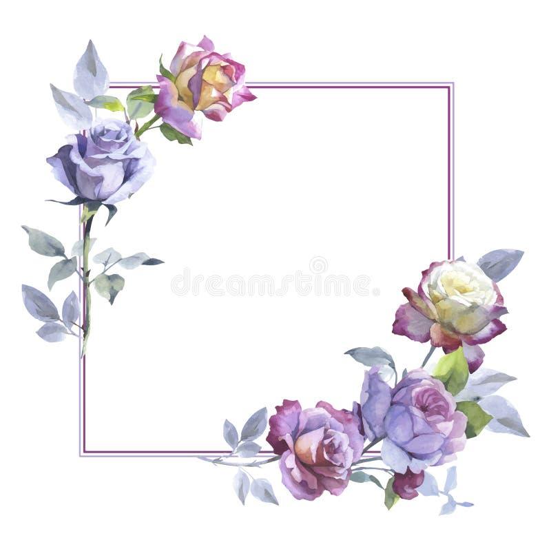 在传染媒介样式的野花玫瑰色花框架 库存例证
