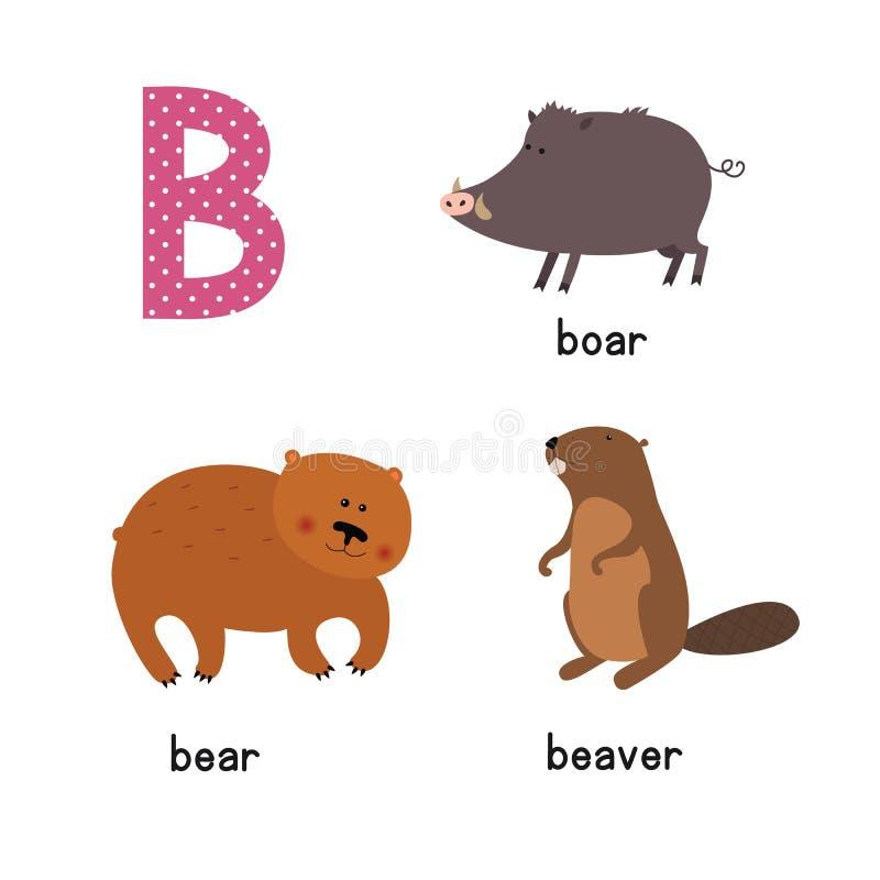 在传染媒介的逗人喜爱的动物园字母表 B信件 滑稽的动画片动物:熊,海狸,公猪 向量例证