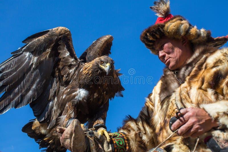 在传统衣物的老鹰猎人,当寻找对拿着一只鹫,在山西蒙古时的野兔 图库摄影