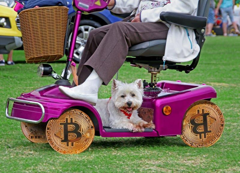 在伤残滑行车的Bitcoin轮子 图库摄影