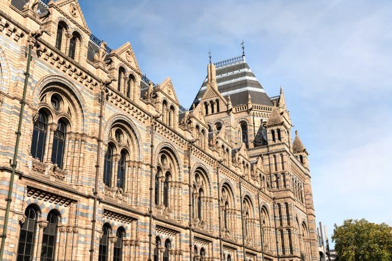 在伦敦自然历史博物馆旁边翼的看法  免版税库存图片