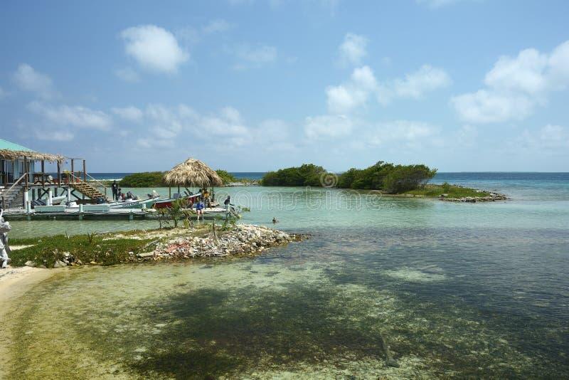 在伯利兹礁石的烟草Caye在中美洲 免版税库存图片
