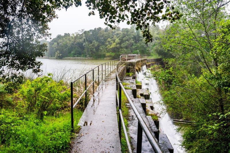 在位于碧玉里奇生物蜜饯的Searsville湖的水坝在一下雨天,旧金山湾区,加利福尼亚 图库摄影