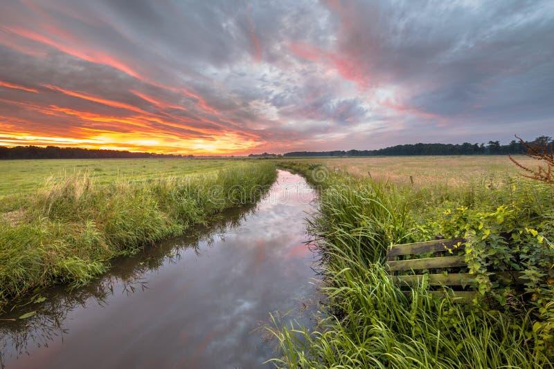 在低地河的温暖的夏天日出 免版税库存照片