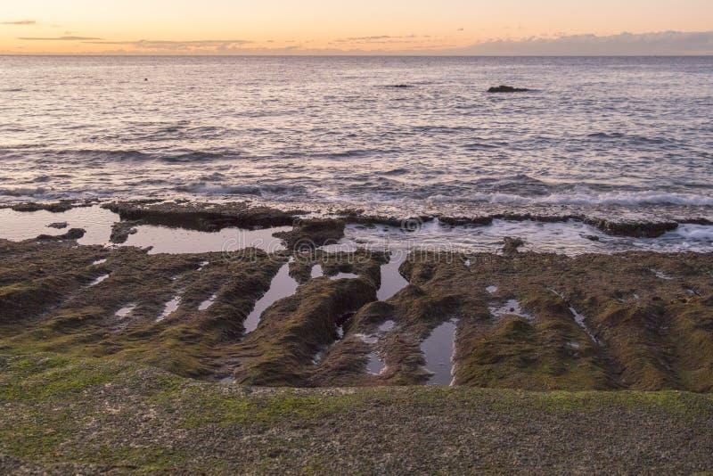 在低潮期间的岩石特内里费岛海洋岸 库存图片
