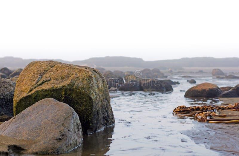 在低潮期间的岩石 免版税图库摄影