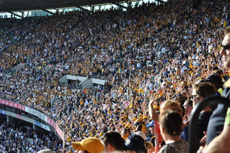 在体育体育场MCG墨尔本维多利亚澳大利亚的人群 免版税库存照片