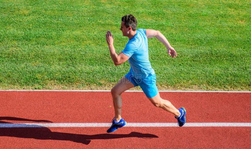 在体育场轨道的短跑选手训练 进展和成就 训练前面在马拉松参与 人被抓住  免版税库存图片