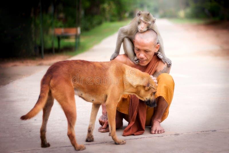在佛教的仁慈 库存图片