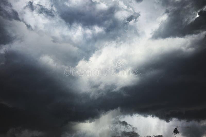 在佛罗里达海岸的危险风暴  库存照片