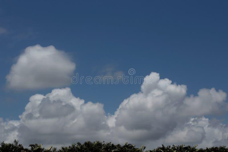 在佛罗里达的云彩 库存照片