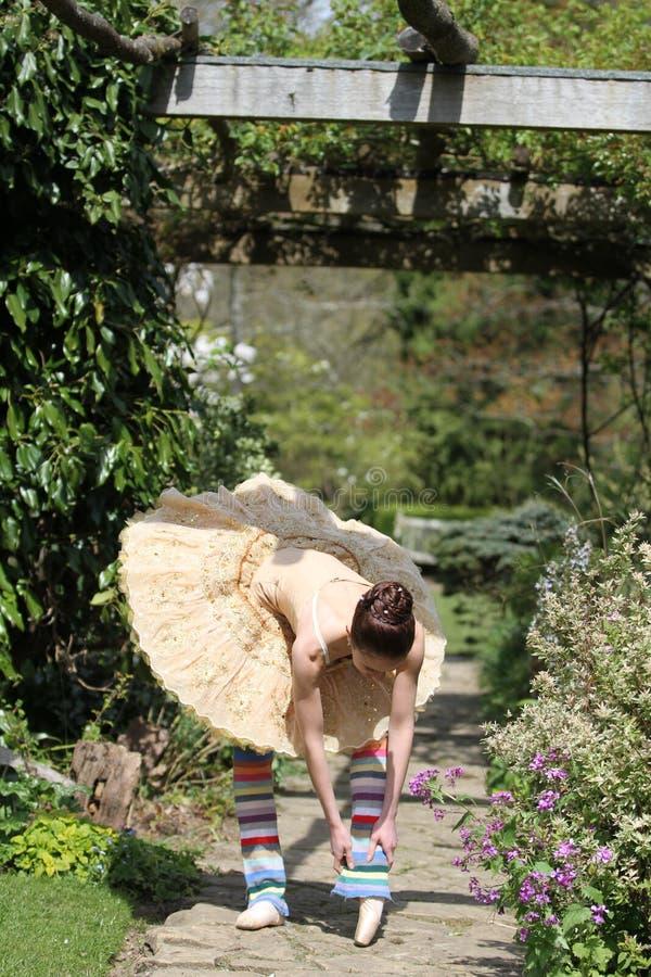 在作为之间的跳芭蕾舞者 免版税库存图片