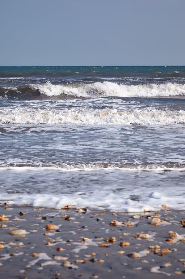 在侏罗纪海岸海滩的海浪 Lyme regis 西多塞特,英国 库存图片