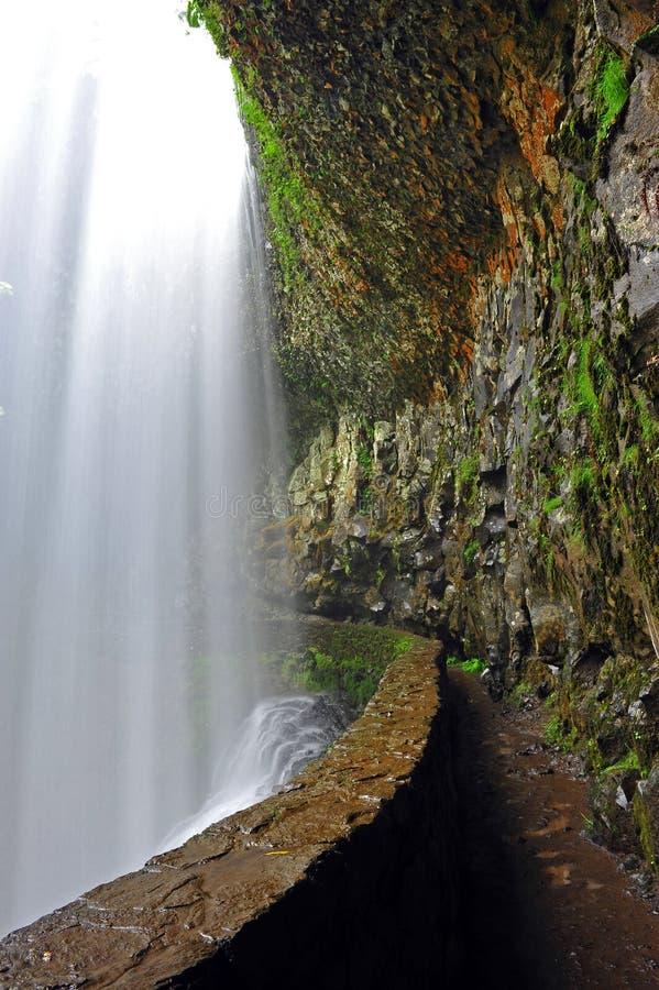 在供徒步旅行的小道瀑布之后 免版税库存图片