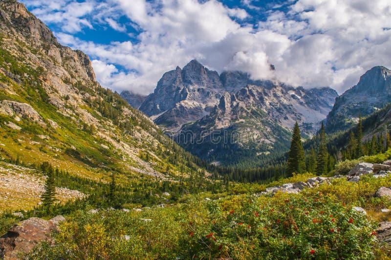 在供徒步旅行的小道的山脉灰在小瀑布峡谷-盛大T 免版税图库摄影