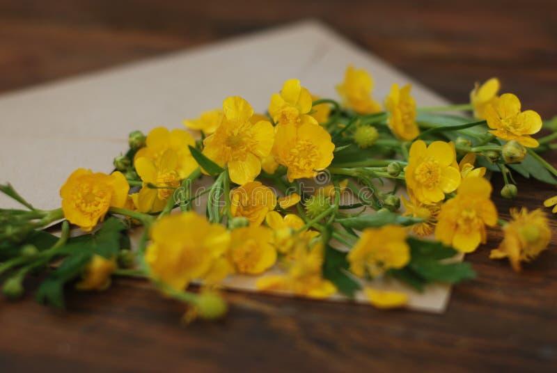 在信封土气木背景横幅舱内甲板位置的黄色小的花 库存照片