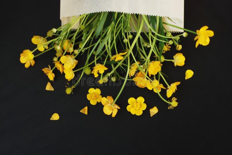 在信封黑色背景舱内甲板位置拷贝空间的黄色小的花 库存照片