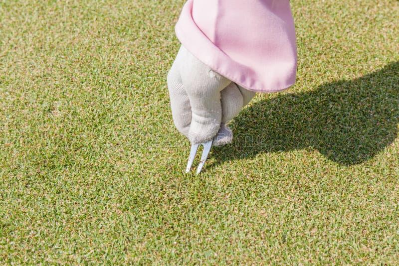 在修理高尔夫球绿色表面上的手套的女职工手草皮 库存图片