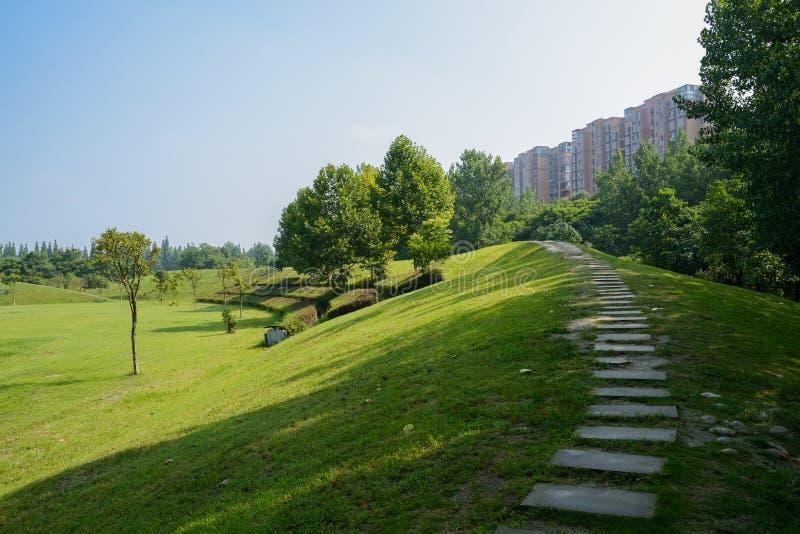 在倾斜的遮荫石板道路在公寓前在晴朗的夏天 库存照片