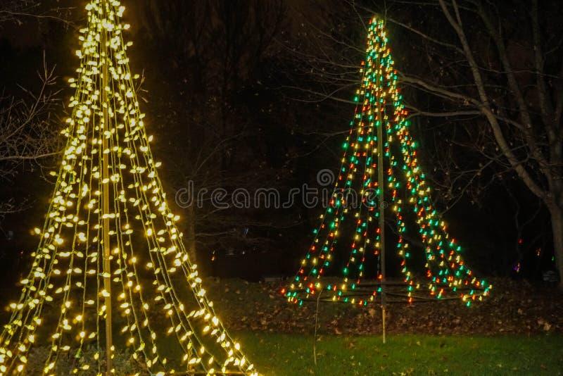在假日光展示的两棵被点燃的圣诞树 免版税库存照片